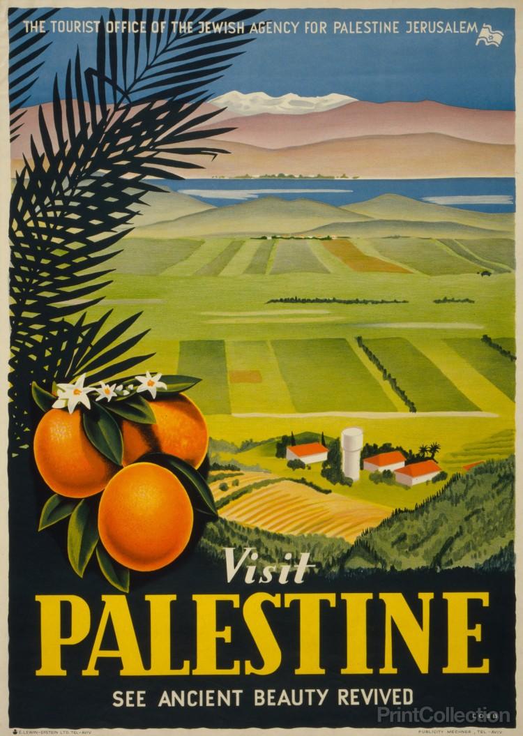 visit-palestine-revived_9de1933a-4066-4714-b6c1-9a8ab0680590